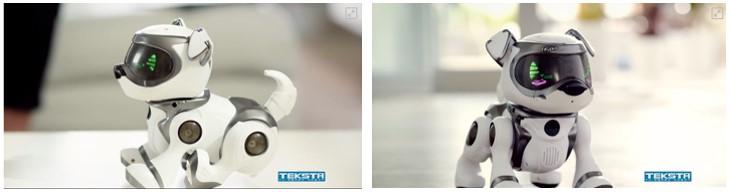 Imagen de frente y de perfil del perro robot para niños Teksta