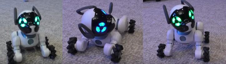 3 imágenes de cómo obedece comandos un perro robot para niños