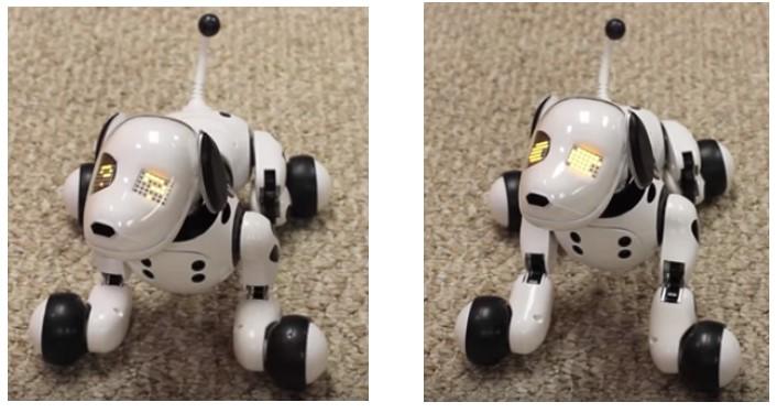 Zoomer el perro robot para niños obedeciendo órdenes