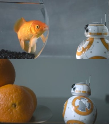 Imagen de la subcategoria Hasbro vs Sphero de la web MyBotRobot